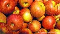 14-red-apples