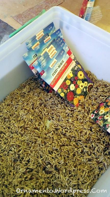 12.seeds