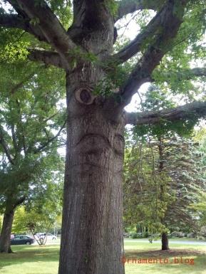 Treewithaface